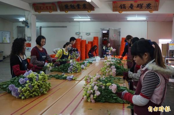 新港鄉農會花卉產銷班成員正為洋桔梗剪枝、紮束。(記者曾迺強攝)