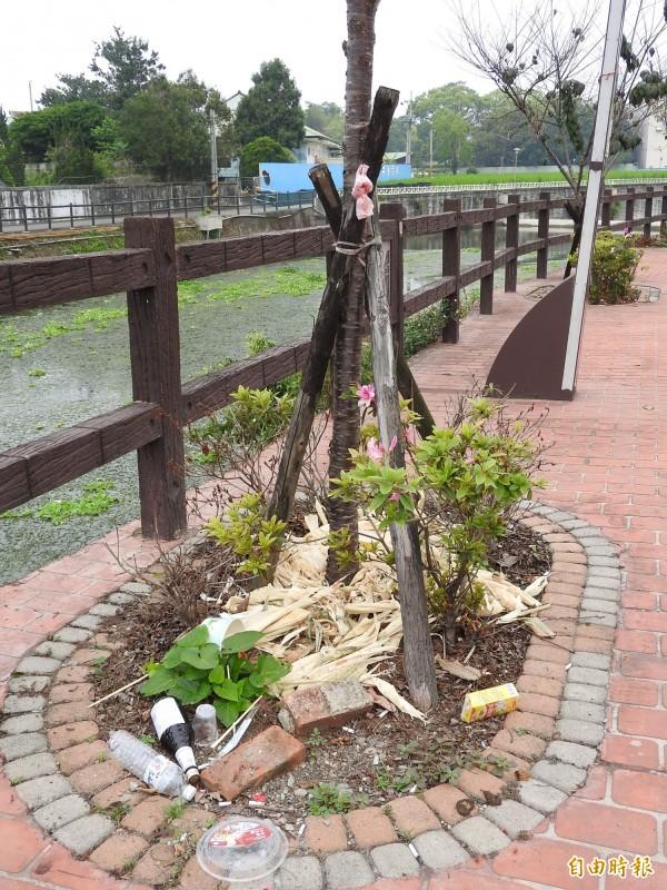 不僅水面環境要改善,杷城排洪道旁的人行步道也遍布垃圾。(記者佟振國攝)