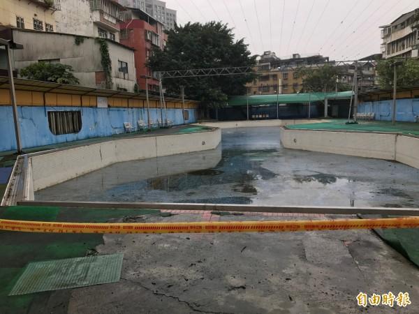 自強游泳池佔地約一公頃,因屬戶外場地,泳池常漂浮落葉或昆蟲,管理不易,去年歇業後閒置。(記者張安蕎攝)