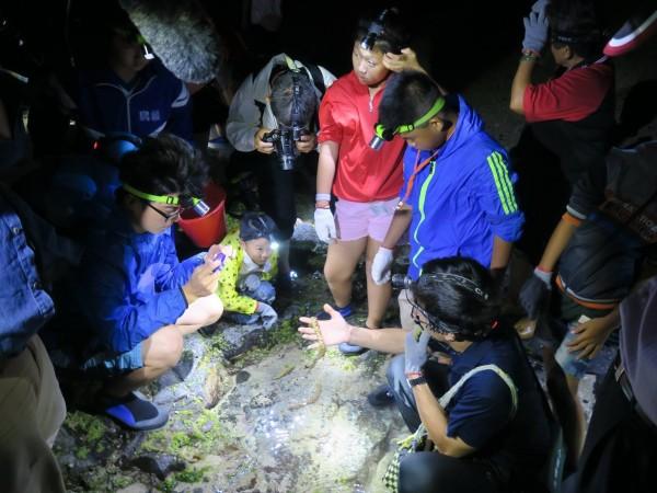 澎湖潮間帶自然生態豐富,讓小朋友快樂學習。(記者劉禹慶翻攝)