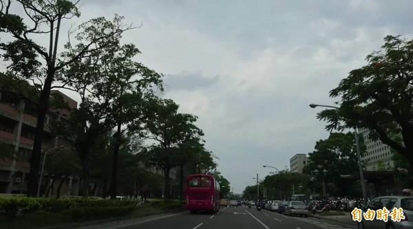 市府規劃單軌捷運路網會經過小東路。(記者洪瑞琴攝)