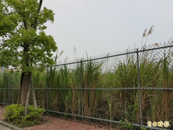 新竹縣政府從竹東鎮台泥自辦市地重劃區獲分配的商業區土地,連續標售12次未脫標,將於下月辦理第13次標售。(記者蔡孟尚攝)