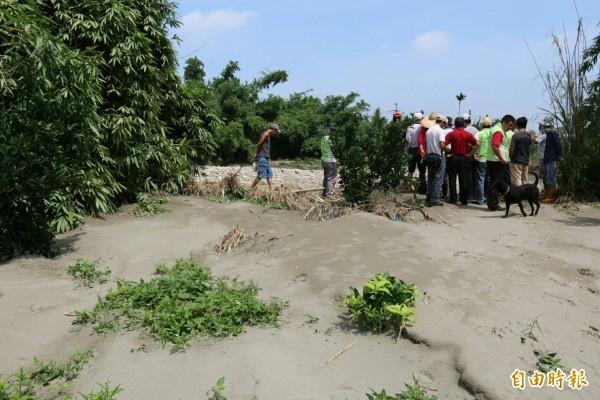 石牛溪土堤有缺口,大水從缺口溢出,淹沒農地。(記者詹士弘攝)