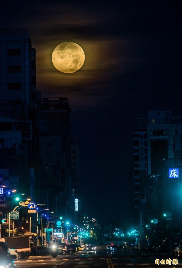 今天清晨4點48的「高雄懸月」讓人期待。(記者張忠義攝)