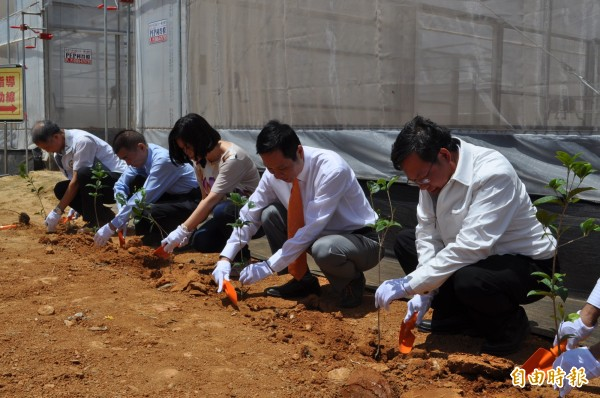 桃園市長鄭文燦(右一)在台灣房屋集團友善食安園區種下樹木幼苗。(記者周敏鴻攝)