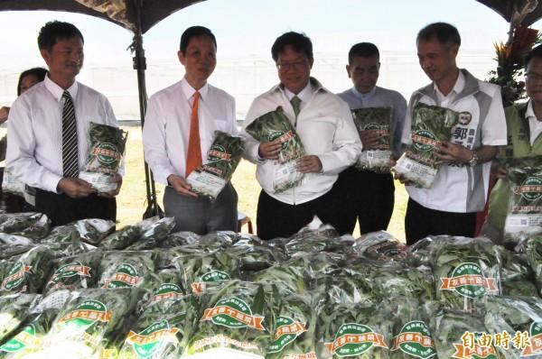 台灣房屋集團友善食安園區捐贈社福機構蔬菜,由桃園市長鄭文燦(中)代表受贈。(記者周敏鴻攝)