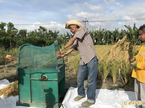 國中生食農教育,不知這台叫做「打穀機」。(記者顏宏駿攝)