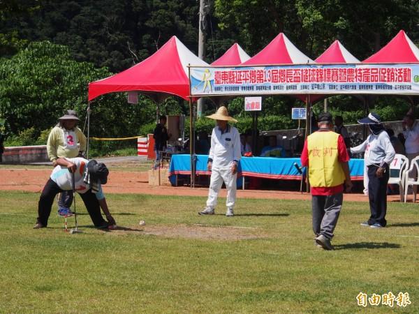 延平鄉公所藉由槌球邀請賽,促進鄉內鳳梨。(記者王秀亭攝)