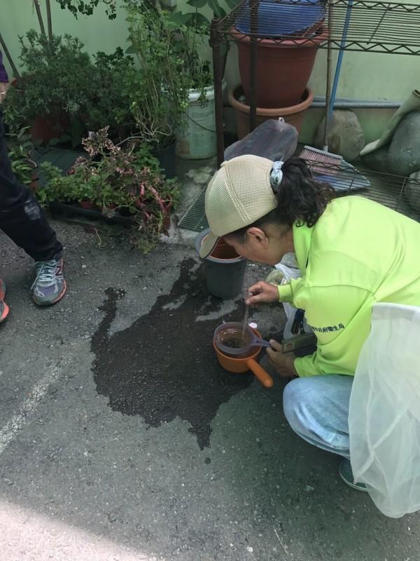 防疫人員查獲積水容器滋生登革熱病媒蚊幼蟲。(衛生局提供)