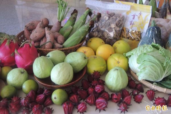 台東農作物種類多樣,縣府計畫增設加工廠,提升產品價值。(記者張存薇攝)