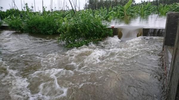 林邊淹大水原因從清林公園溢流出來。(圖:永樂村長蔡玉心提供)