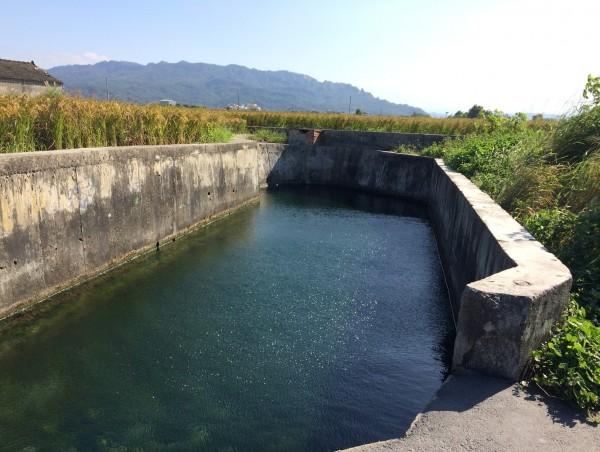 大甲太白里及幸福里湧泉是當地居民消暑的好去處。(水利局提供)