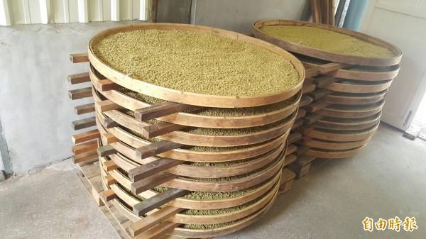 花蓮「新味醬油」歷史悠久,秉持遵照古法製作,耗時費工。(記者王峻祺攝)