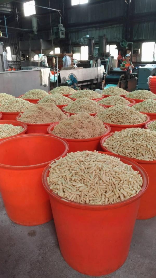 地下工廠生產的豆棗類產品紅豆支(記者楊政郡翻攝)
