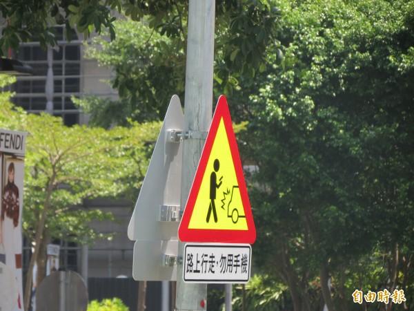 邊滑手機邊過馬路太危險,中市交通局在市政府附近路口試辦立「路上行走勿用手機」的標誌提醒民眾。(記者蘇金鳳攝)