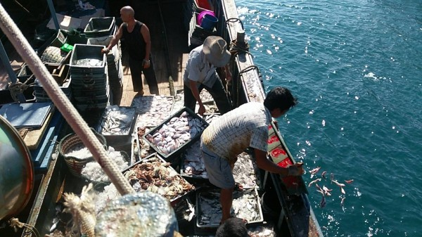 澎湖海巡隊查扣越界中國漁船,先要求海拋漁獲。(澎湖海巡隊提供)