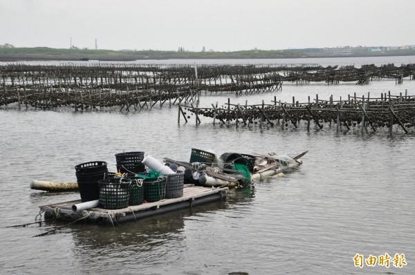 蚵農以平台船為載具,餵食牡蠣及採收。(記者劉禹慶攝)