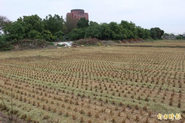 彰化地區今年2期稻作收割已結束。(記者張聰秋攝)