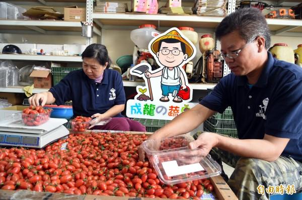 蕭成龍表示,務農沒有捷徑,必須一步一腳印、腳踏實地經營。(記者張忠義攝)