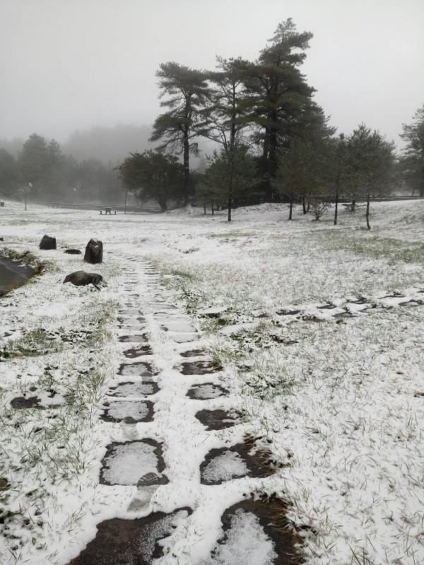 福壽山農場露營區步道也被白雪覆蓋。(民眾提供)