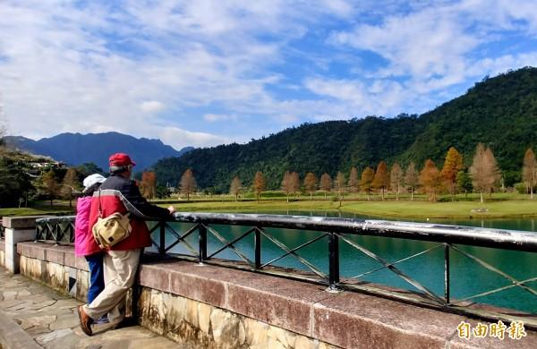 直擊宜蘭落羽松紅了!員山湖邊秘境紅葉襯綠水。(記者簡惠茹攝)
