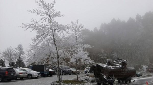 太平山冰封雪景。(記者江志雄翻攝)