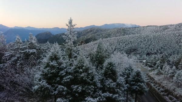 太平山今晨氣溫僅兩度,山頭仍有霧淞美景。(太平山莊提供)