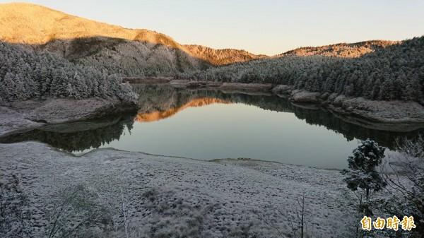 太平山今天見晴,金黃色暖陽灑落在翠峰湖畔,配上霧淞美景,宛如在藍寶石上鑲碎鑽。(太平山莊提供)