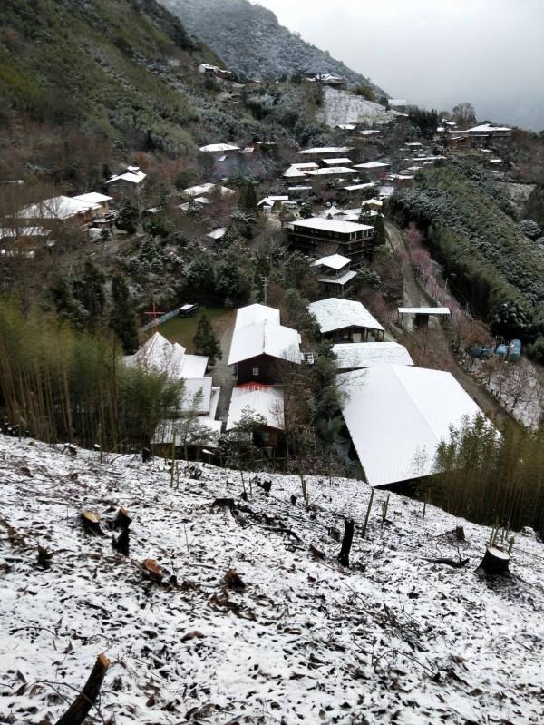 新竹縣尖石鄉司馬庫斯部落昨晚飄雪到今天凌晨,處處薄雪讓當地彷彿披上一層白紗般的純潔神聖。(圖由拉互依提供)