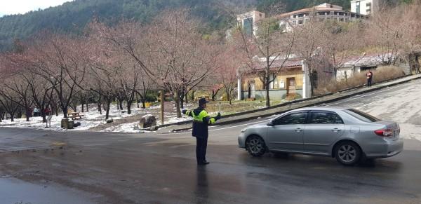 警方配合武陵櫻花季,將實施交通疏導管制。(和平分局提供)