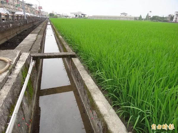 宜蘭縣代理縣長陳金德要求環保局加強水污染稽查管制,訂定停工標準,確保好水好水與灌溉品質。(記者游明金攝)