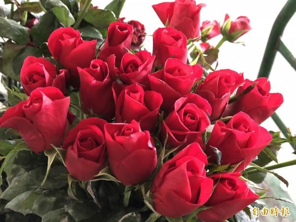 情人節以紅色、粉色系的玫瑰最受歡迎。(記者佟振國攝)