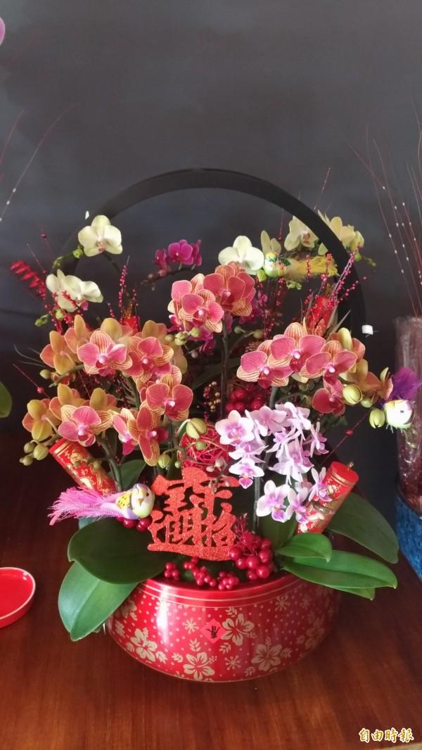 春節期間蘭花組成的禮籃大搶手。(記者廖淑玲攝)