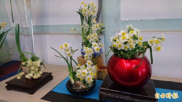 水仙花雕刻技藝,鹽水傳承多年。(記者楊金城攝)
