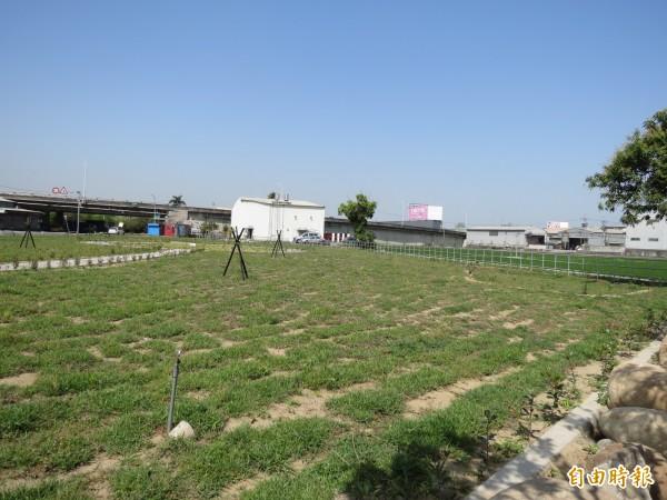 台中烏日第一公墓已完成遷建,改建成為一片綠地,還連著一片農地,如同無邊際的綠地。(記者蘇金鳳攝)