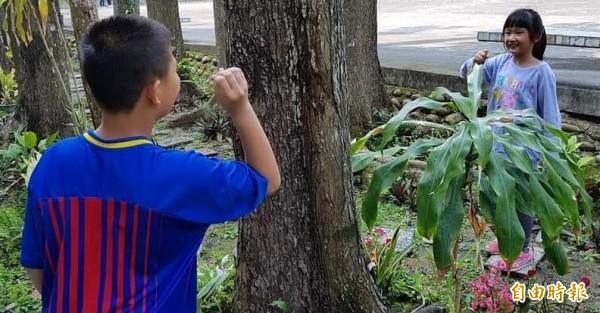 南投縣竹山鎮鯉魚國小學生在「花園步道」園區,透過猜拳進行「地遊」情形。(記者謝介裕攝)