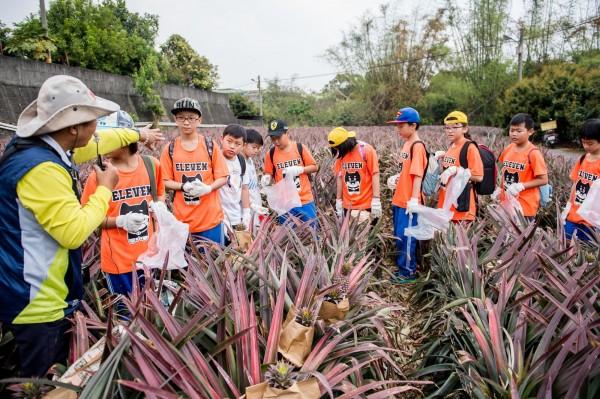 大樹龍目社區是鳳梨大地博物館,因「一日農夫」爆紅聞名國際。(記者陳文嬋翻攝)