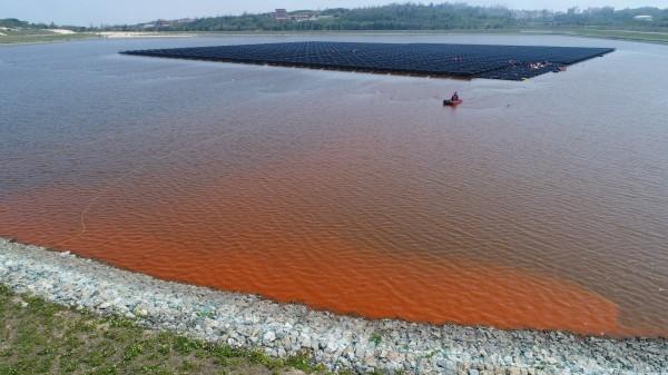 金門金湖水庫出現藻華現象,自來水廠認為該藻種為「葡萄藻」,屬無毒藻種,一般在旱季及氣溫回升時較為明顯。(圖由讀者提供)