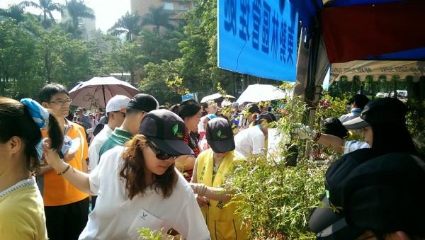 東勢林管處參與萬人健行活動,發放苗木,現場大排長龍。(東勢林管處提供)