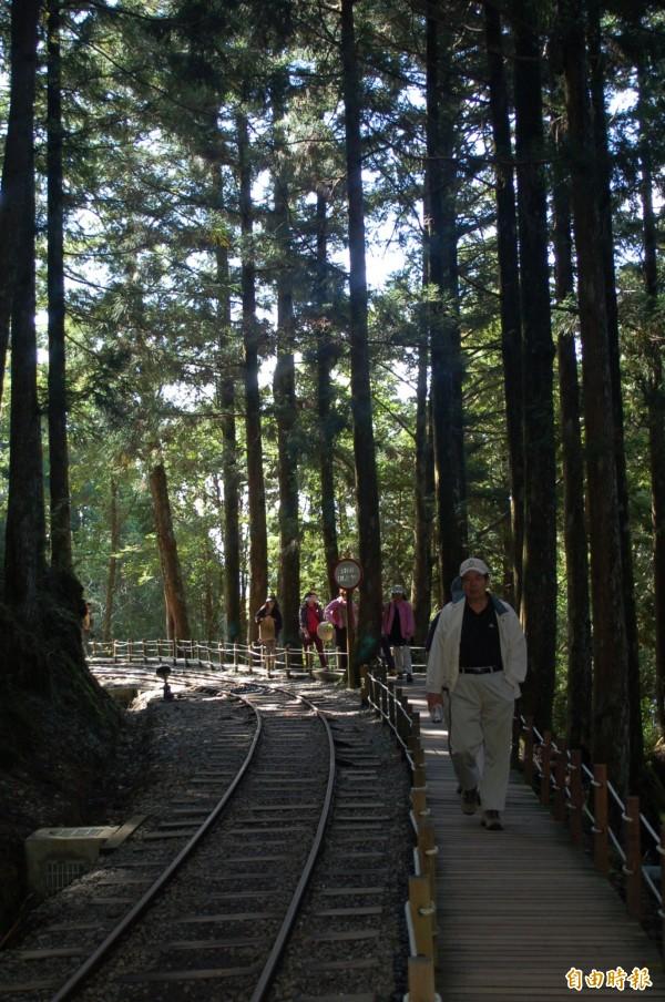 蹦蹦車沿線林木蓊鬱。(資料照,記者江志雄攝)
