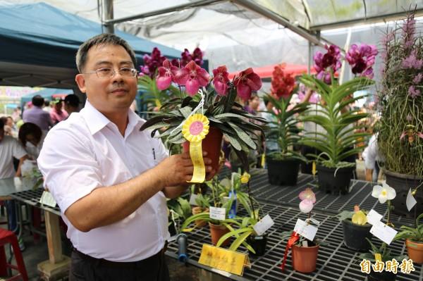 蘭展會場中不乏日前在國際蘭展得獎得花卉。(記者邱芷柔攝)
