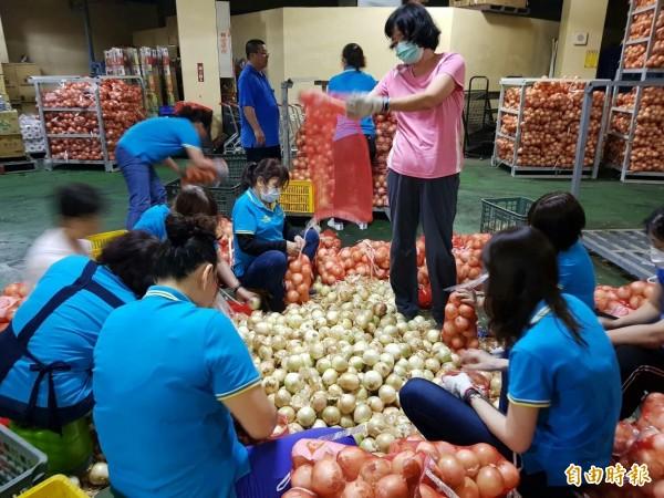 台灣電力工會結合各分會力量,送出首批認購的八千多公斤洋蔥。(記者蔡宗憲攝)