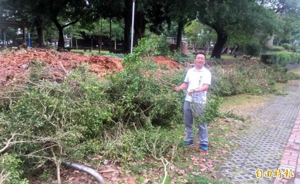 南投縣竹山鎮民代表蔡易呈抨擊,公所做了砍樹的最壞榜樣。(記者謝介裕攝)