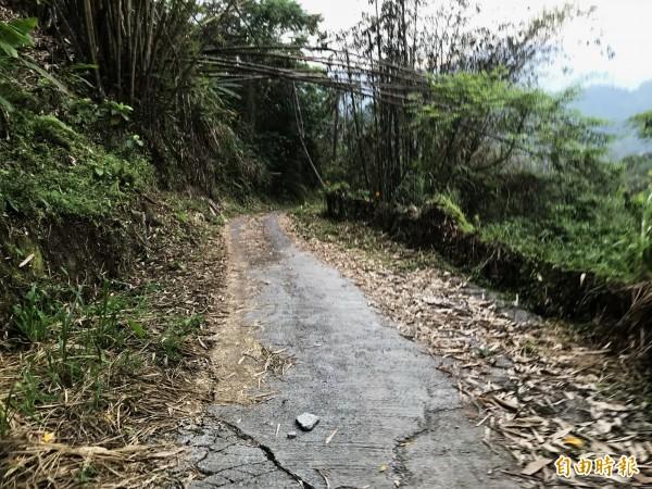 上山道路狹隘,不熟悉的民眾貿然開車前往,真的很危險。(記者吳俊鋒攝)