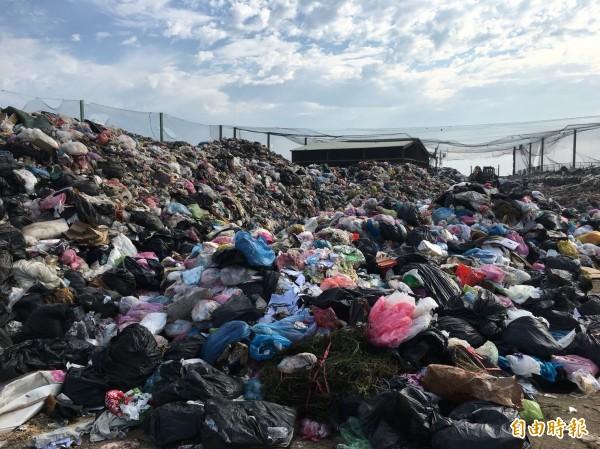 澎湖垃圾停運兩週,已堆積如山。(記者劉禹慶攝)