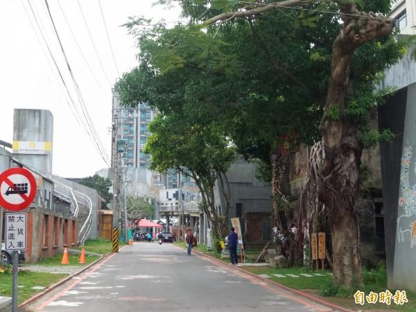 新竹縣政府今年首度把5月5日的桐花祭重頭戲「桐樂會」,搬到竹東火車站旁的文創藝術村。(記者廖雪茹攝)