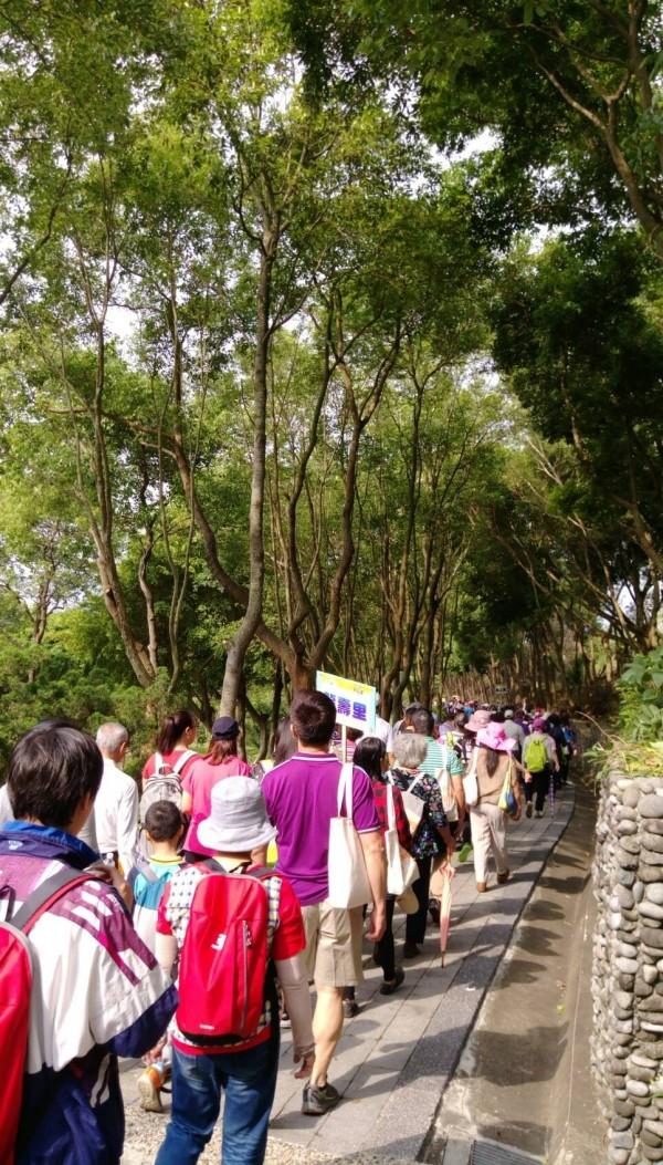 4月油桐花盛開,林口長庚號召4000人健走賞桐。(林口長庚提供)