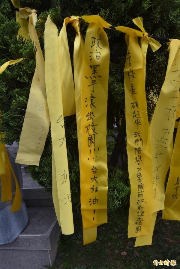 台大傅鐘廣場旁樹上繫了許多黃絲帶,其中有的寫上「政治黑手滾出校園」等語。(記者吳柏軒攝)