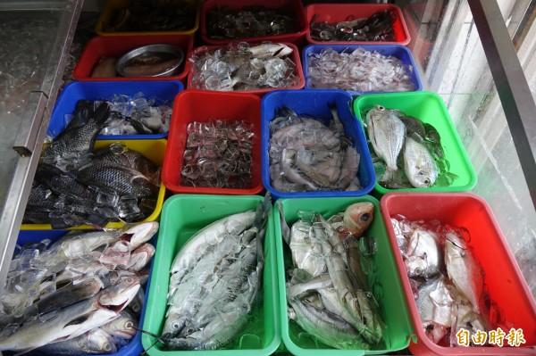 精選當季海鮮,彰化線西源泉活海鮮餐廳招牌菜首選當季、當地、野生海鮮食材。(記者劉曉欣攝)