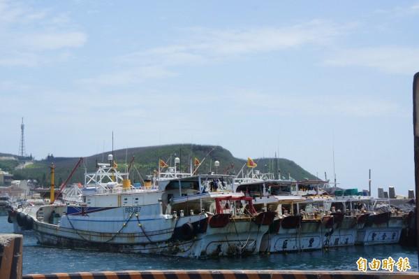 立委楊曜希望透過提高自願性休漁獎勵金,兼顧海洋生態與漁民生計。(記者劉禹慶攝)